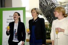 Ms Comité de ambiente solitario de Loklindt_chairwoman Fotografía de archivo