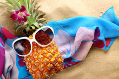 Ms pineapple stock photography