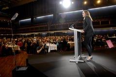 MS SF党的插入式放大器奥利森DYHR女主席 免版税库存图片