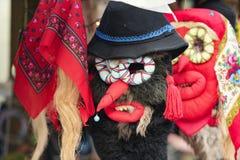 Máscaras romenas Imagens de Stock