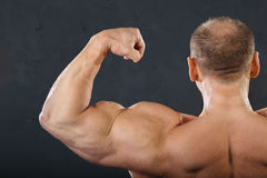 Músculos da parte traseira, da garganta e da mão do bodybuilder Fotos de Stock Royalty Free