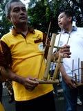 Música de bambú Foto de archivo libre de regalías