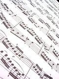 Música de folha Imagem de Stock Royalty Free