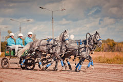 Mästerskap av den Ryssland rysstrojkan Arkivbilder