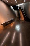 MSU宽广的美术馆内部 免版税库存图片