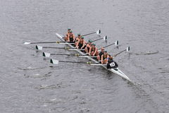 MSU Women's Crew races in the Head of Charles Regatta Women's Master Eights Royalty Free Stock Images