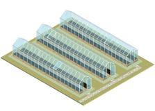 Mszalny gospodarstwo rolne Isometric szklarnia z szklanymi ścianami, podstawy, dwuokapowy dach royalty ilustracja