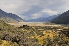 Mt厨师和平原,新西兰 库存照片