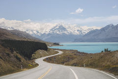 Mt厨师观点和普卡基湖, NZ 库存照片