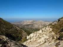 Mt宙斯的山橄榄树小树林在希腊海岛 免版税库存照片