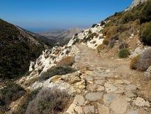 Mt宙斯的山橄榄树小树林在希腊海岛 库存图片