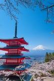 Mt富士和在日本春季日本Cal的樱花 库存图片