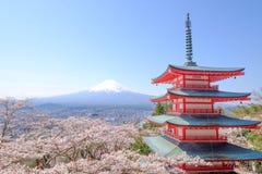 Mt富士和在日本春季日本Cal的樱花 图库摄影