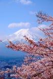 Mt富士和在日本春季(日本Cal的樱花 库存例证