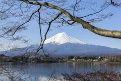 Mt富士和樱花 免版税库存照片