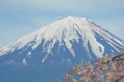 Mt富士在一个晴天,进行下去的樱桃开花开花 免版税库存图片