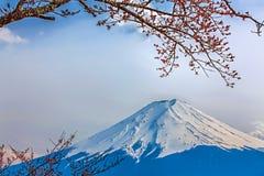 Mt富士 免版税图库摄影