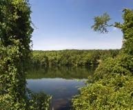 Mt希望池塘视图 库存照片