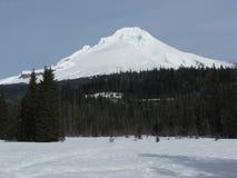 Mt敞篷积雪覆盖的峰顶 免版税库存照片