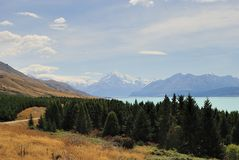Mt烹调,蓝色湖和森林新西兰 免版税库存照片
