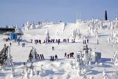 Mt的空中图象 华盛顿高山滑雪胜地,温哥华岛, BC,加拿大 图库摄影