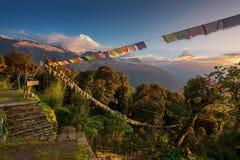 mt视图华盛顿 安纳布尔纳峰和祷告旗子在日出从Tadapani,尼泊尔 免版税库存图片