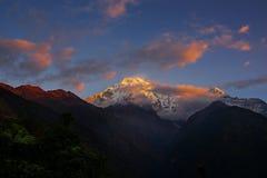 mt视图华盛顿 日出的安纳布尔纳峰III从Chomrong,尼泊尔 库存图片