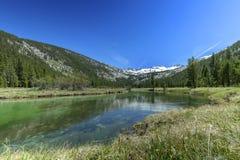 Mt Écoulement de Lyell Images libres de droits