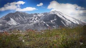 Mt Świątobliwy Helens stan Waszyngton zdjęcie stock