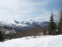 Mt Święty Helens od daleko Zdjęcia Stock