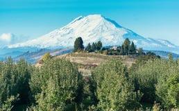 Mt Адамс, Вашингтон, как увидено от Рекы Hood, ИЛИ Стоковые Фотографии RF