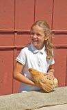 MT ВЕРНОН, WA - цыпленок ребенка 13-ое-4 августа h судя на графстве f Стоковое Изображение RF
