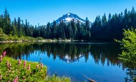 Mt Клобук отраженный в озере зеркал, Орегоне стоковые изображения rf