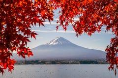 Mt Фудзи в осени с красными кленовыми листами Стоковые Фото