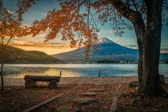 Mt Фудзи над озером Kawaguchiko с листвой осени на восходе солнца внутри стоковая фотография rf