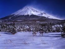 Mt Фудзи стоковое изображение