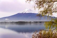 Mt Фудзи на Kawaguchiko Стоковое Изображение RF
