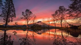 Mt 与大树和湖的富士日出的在富士宫 影视素材