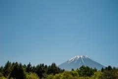 Mt 与杉木森林和蓝天的富士 免版税库存图片