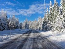 Mt 向天堂的更加多雨的路 免版税图库摄影