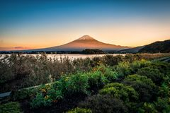 Mt 在湖Kawaguchiko的富士有日落的花园的在富士河口湖町,日本 库存照片