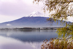 Mt 在Kawaguchiko的富士 免版税库存图片