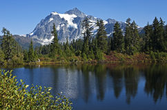 Mt 在Picture湖,华盛顿上的Shuksan 免版税库存照片