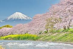 Mt 在Uruigawa河的富士 免版税库存照片