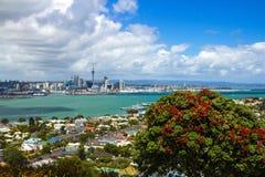 从Mt维多利亚Devonport奥克兰新西兰的奥克兰视图 免版税库存图片