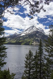 Mt 大蒂顿国家公园的,怀俄明Moran 图库摄影