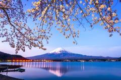 Mt 富士春天 库存图片