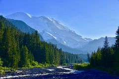 Mt 从怀特河,埃蒙丝冰碛足迹, Mt的更加多雨的Tahoma 更加多雨的国家公园,华盛顿 免版税图库摄影
