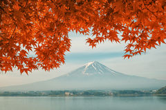 Mt 有秋天颜色的富士山在日本 库存图片