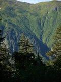 Mt.罗伯特在朱诺,阿拉斯加 免版税库存照片